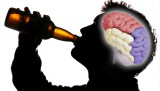 Is Beer Good for your Brain